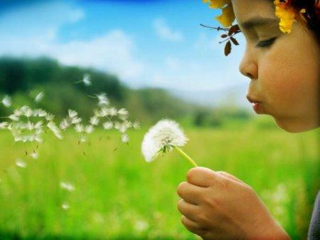 Экологическое воспитание младших школьников в школе и дома