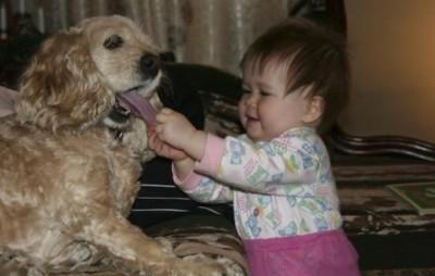 Детская жестокость. Как воспитать доброту. Советы психолога, детское воспитание