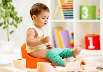 7 правил, как быстро приучить ребенка к горшку